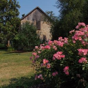 Corbit-Sharp House's Colonial Revival Garden