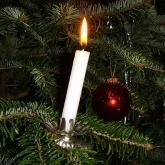 Odessa DE Candlelight Tour